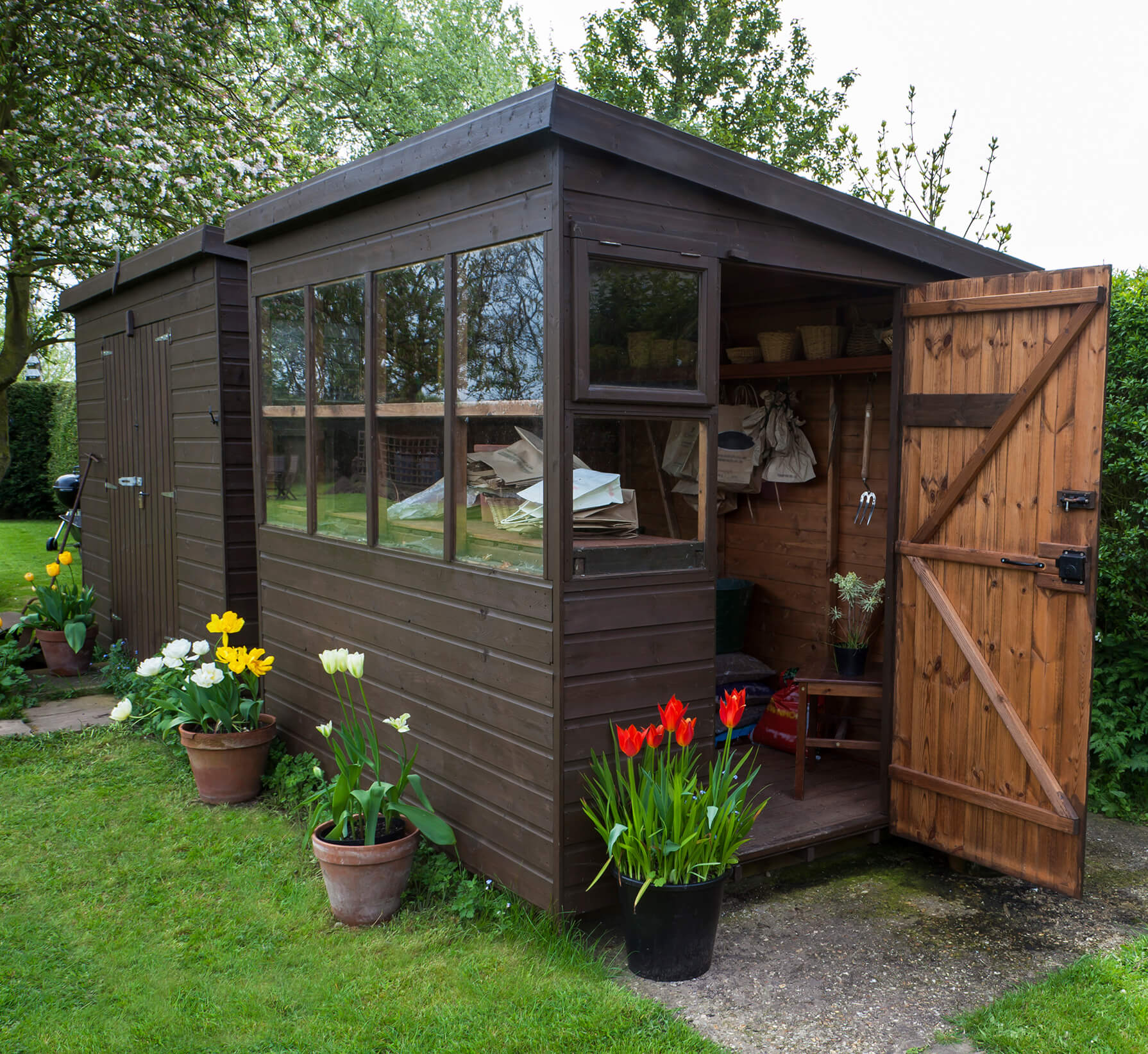 Garden shed exterior with door open, tools, flowers, and plant p